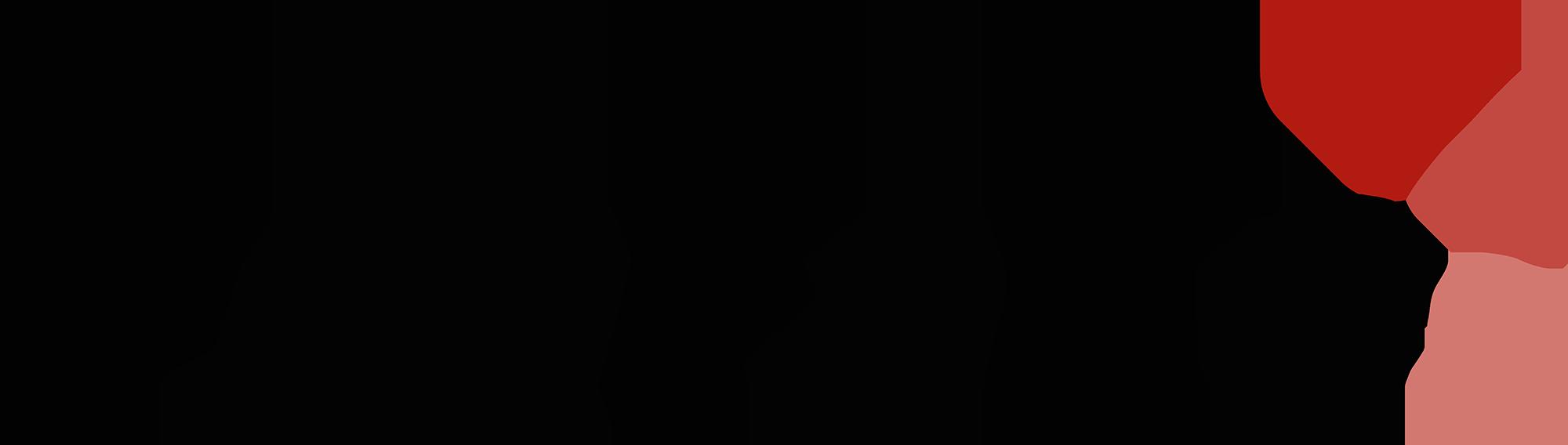 PsyFaKo Logo – 2000Px Width